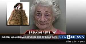 """Elderly Woman Arrested For Making Purses Out Of Neighbors """"Missing"""" Cats!"""