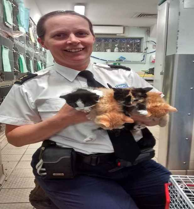 RSPCA inspector Nadine Pengilly with the abandoned cats