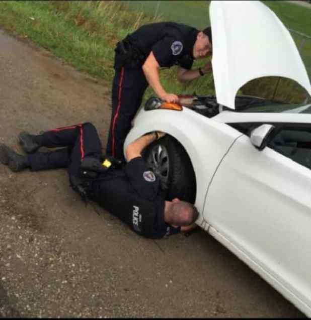 Two officers with the Guelph Police Service at work, trying to rescue a kitten that had taken up residence under the hood of a man's car. (Guelph Police Service)