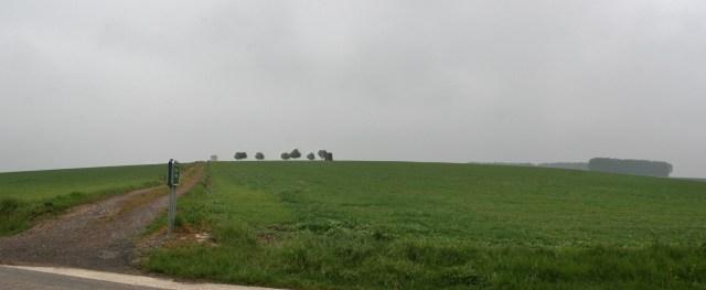 Panorama ddddd