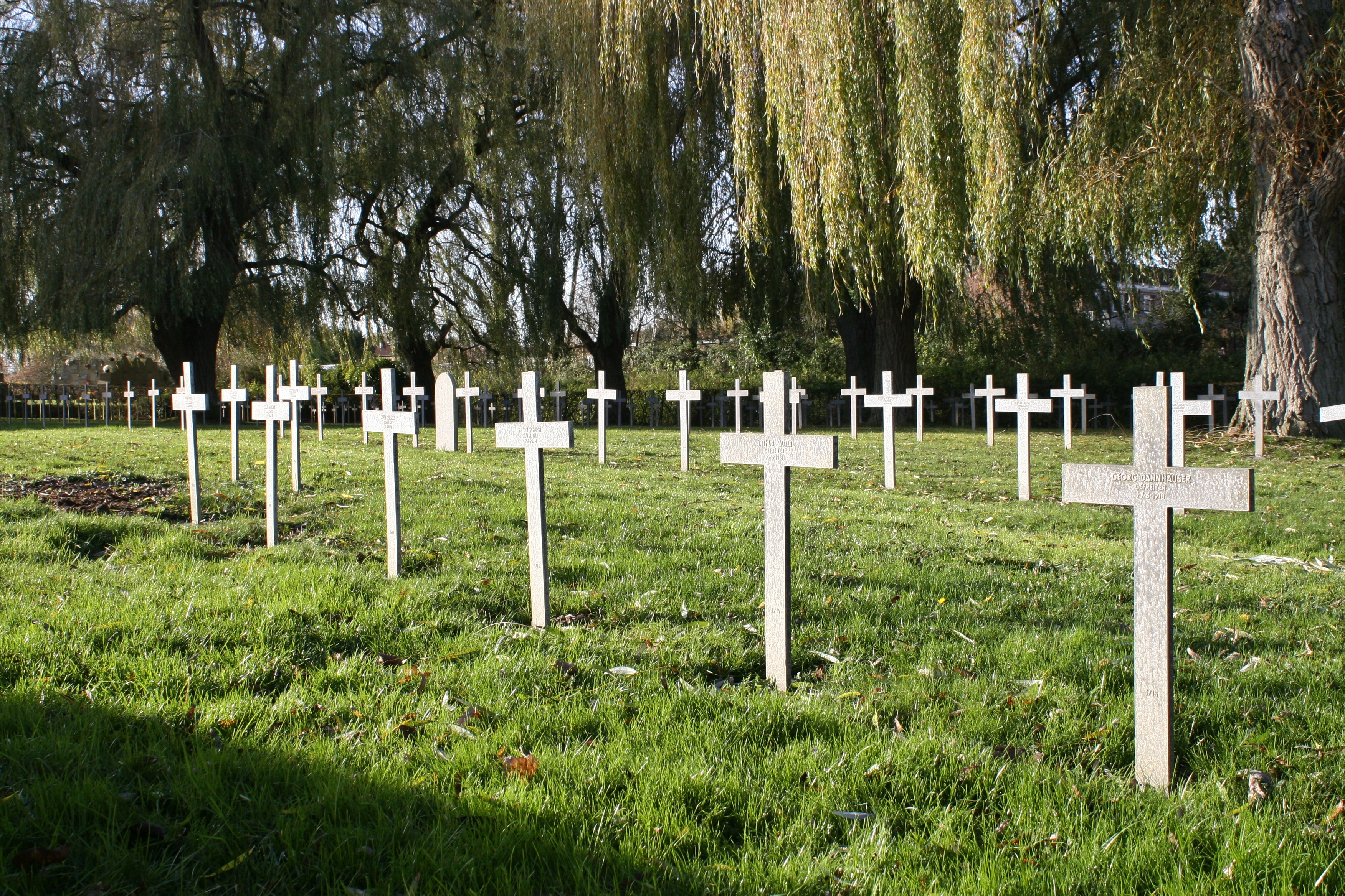 flanders jewish single men This popular oversight has persisted despite the fact that in only a single year of  favoring the establishment of a jewish national  share in flanders fields.