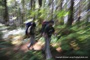Tom and Daniel hiking the overland trail around Hoh Head.