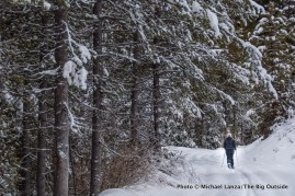 Cross-country skiing the Beaver Trail, Boise National Forest, Idaho.