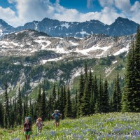 Backpackers on the Pacific Crest Trail near Cloudy Pass, Glacier Peak Wilderness, Washington.
