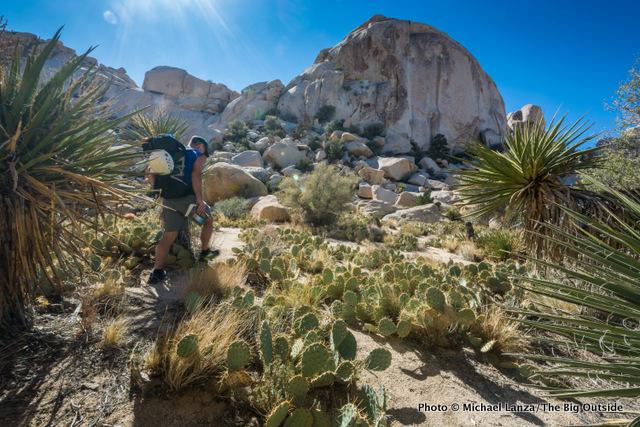 David Ports hiking in the Wonderland of Rocks, Joshua Tree National Park.