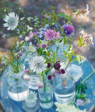Provencal garden 5