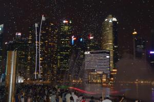 The night show at Marina Bay Sands