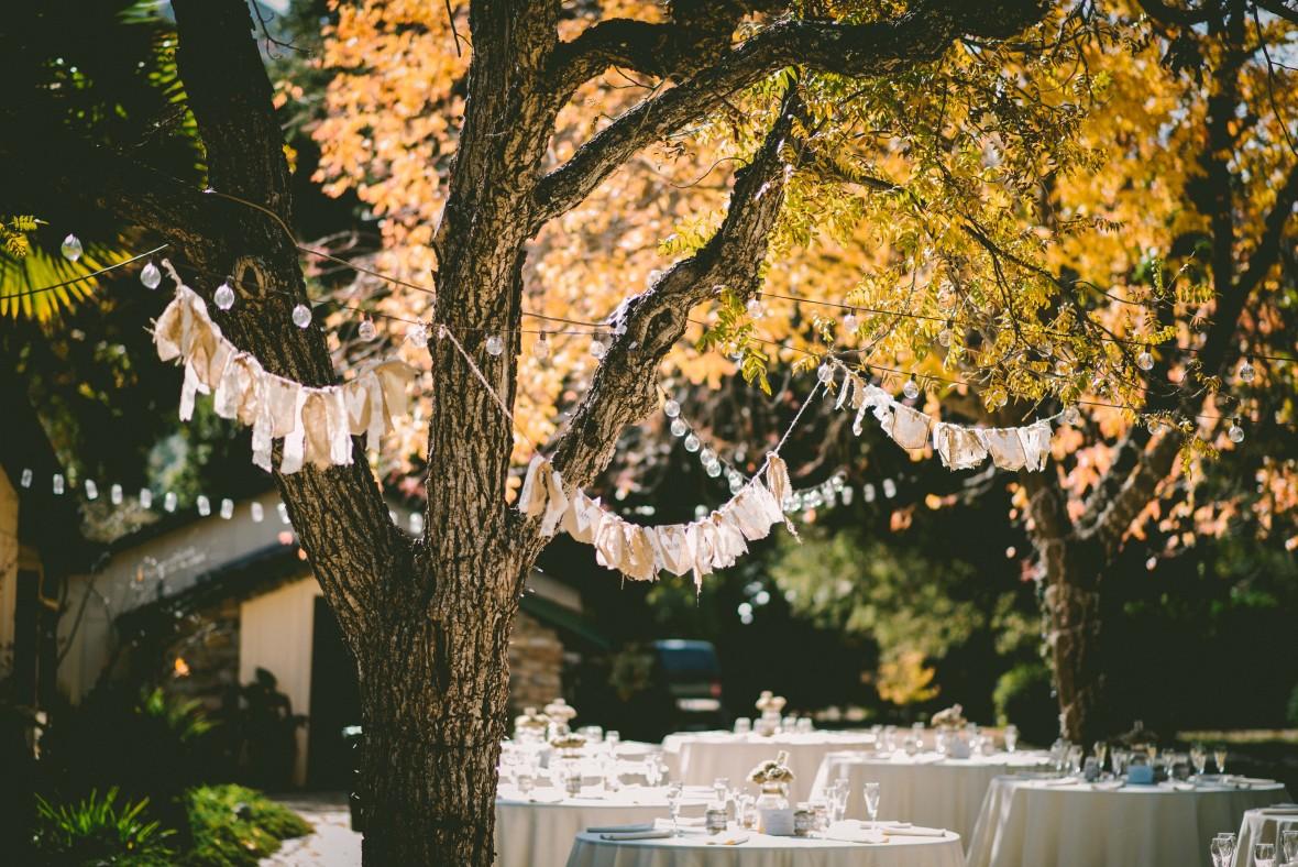 Sleek Making A Backyard Wedding Magical Budget Savvy Bride Backyard Tree Decorations Backyard Tree Decorating Ideas Making Your Backyard Wedding Magical Tips outdoor Backyard Tree Decorations
