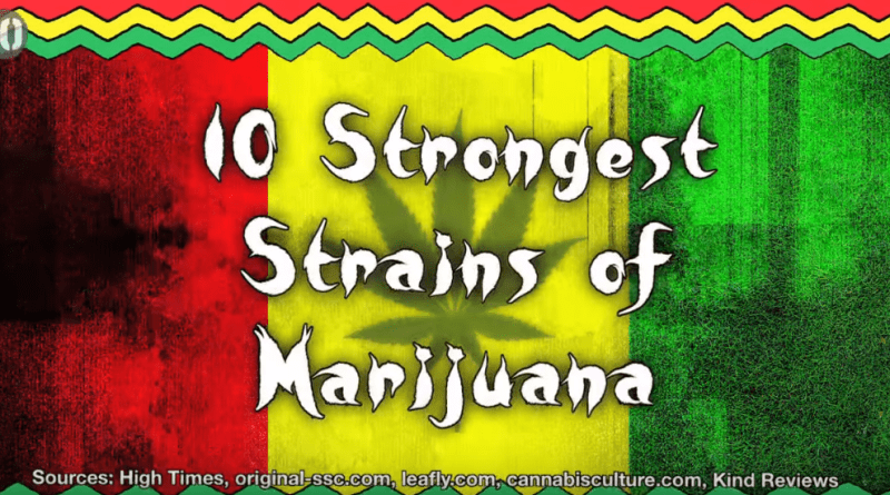 10 Strongest Strains Of Weed