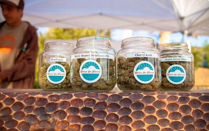 This Might Just Be L.A. County's First City to Permit Pot Cultivation LA Weekly