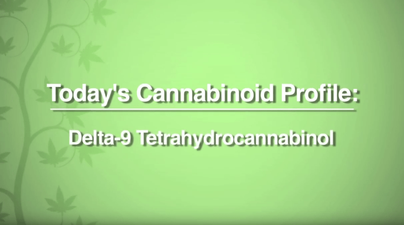 cannabinoid-profile-how-thc-is-made