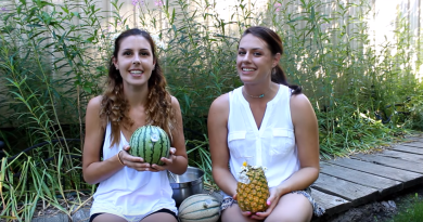 How to make a Cantaloupe, Watermelon, & Pineapple Bong