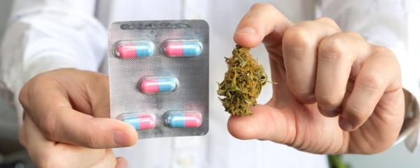 cannabinoid-based-therapies-find-a-home-in-the-pharma-industry