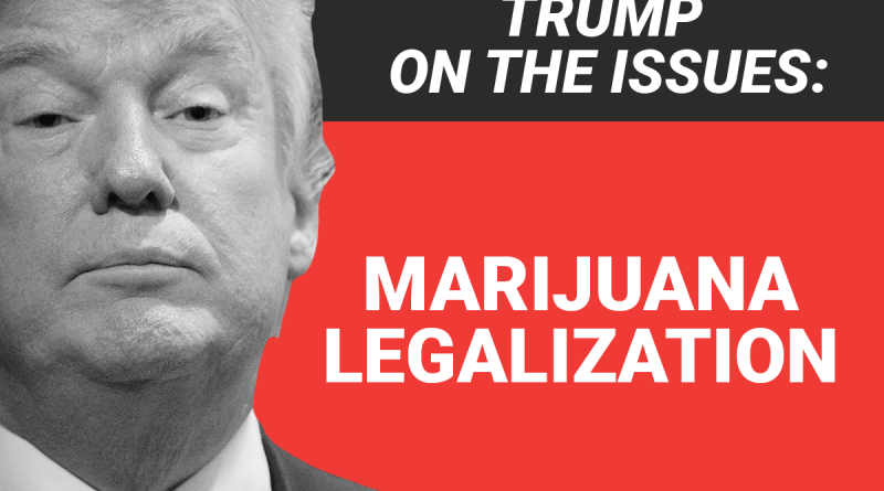 heres-where-donald-trump-stands-on-marijuana-legalization