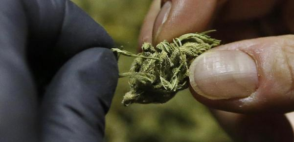 is-it-now-legal-to-smoke-weed-in-florida