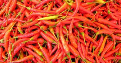 Active ingredients in both hot peppers and cannabis calm the gut's immune system