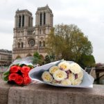 Notre Dame to Notre Dame: University to donate to cathedral restoration