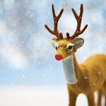 Rudolph to the rescue: the triumph of an under-deer