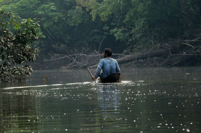 A member of the tikuna tribes fishes in an estuary of the Amazon.