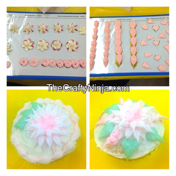 wilton cake decorating 2