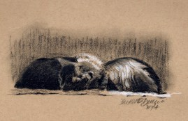 charcoal sketch of two black cats asleep