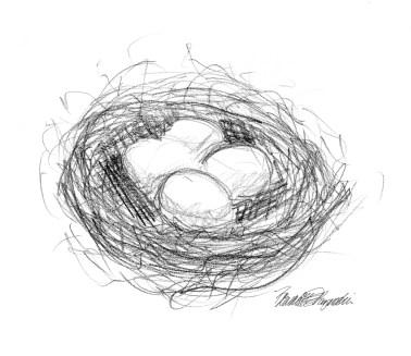 pencil sketch of bird's nest