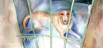 Ilustraciónpor Laura Socas