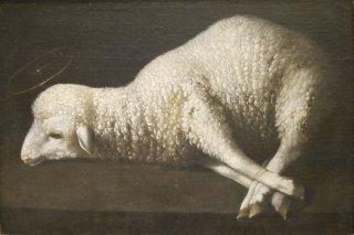 agnus-dei-francisco-de-zurbaran-1635