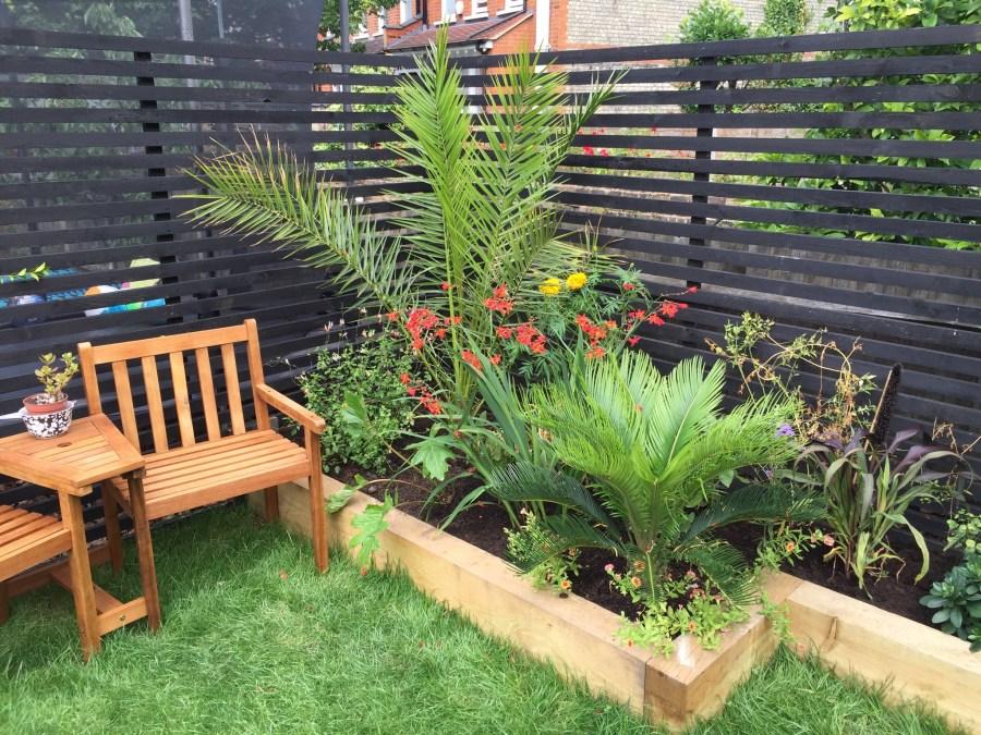 garden design crouch end london (18)