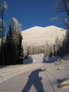 A cross-country skier, shown in shadow, makes his way across the lower slopes at Arizona Snowbowl