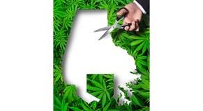 Baltimore County marijuana zoning bill to be watered down