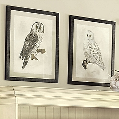 Owl Prints from Ballard Designs Hoot if You Love Owls