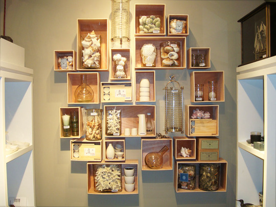 displaying shell collection via apartment therapy Modern Wall Displays of Collections