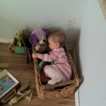{this moment: basket of baby}