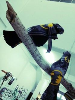 batbird bird is ever watchful
