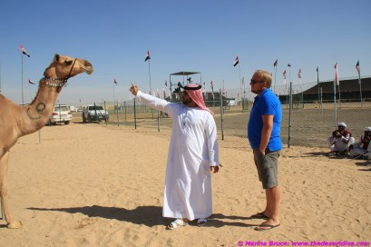 Ali explains the finer points of camel beauty