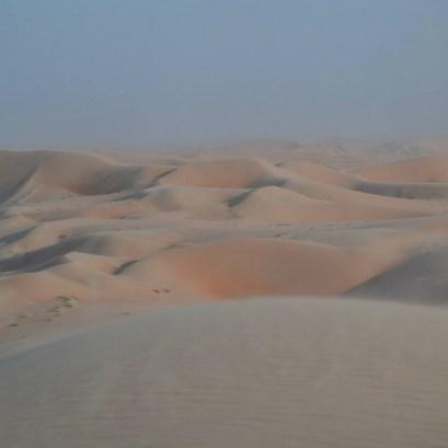 desert life3