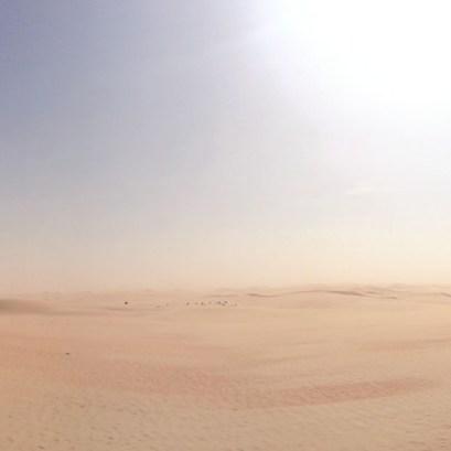 desert life9