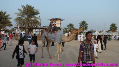 camel rides for the kids