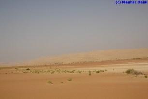 """a green """"patch"""" of desert"""