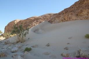 lots of wind blown sand in 2014