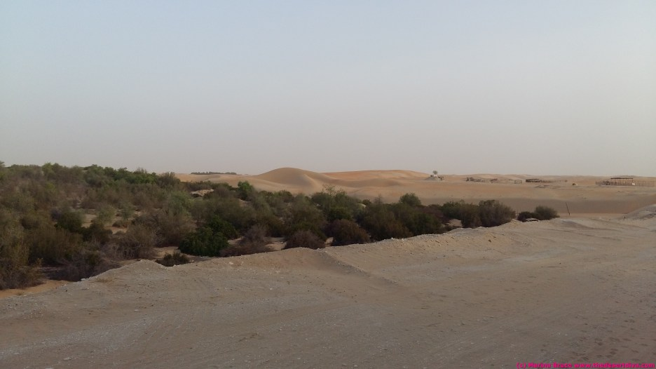the dunes are not too far away from town