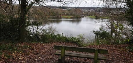 Newton Abbot : Decoy Country Park © Copyright Lewis Clarke and licensed for reuse under this Creative Commons Licence