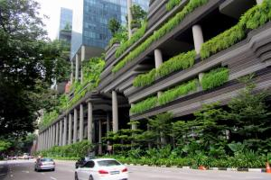 Greeneries in the city of Singapore