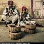20140226_Rajasthan2014_9728-Edit