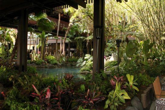 Disney's Polynesian Village Resort - Wordless Wednesday