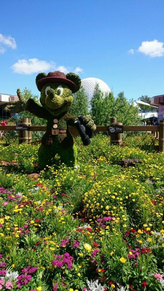 Park Ranger Mickey Mouse Topiary - Wordless Wednesday