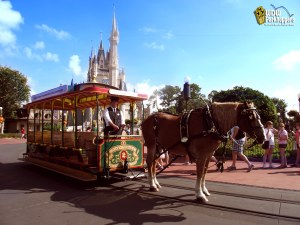 Horse_Carriage_Magic_Kingdom_Walt_Disney_World