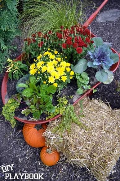 planter-wheelbarrow
