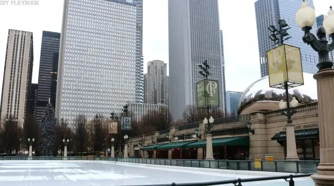 Chicago Ice Rink Bean Tree